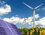 Les énergies renouvelables : la quatrième révolution