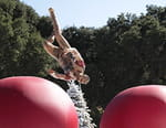 Total Wipeout : Made in USA