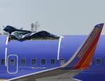 Aircrash Confidential