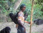Une saison chez les bonobos