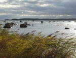 La Baltique sauvage