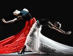 Dentro de «Flamenco hoy»