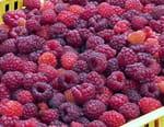 Jus, yaourts, biscuits, où sont passés les fruits ?