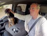 Un homme, un chien, un pick-up - Sur les traces de l'Amérique