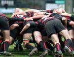 Rugby - Perpignan / Mont-de-Marsan