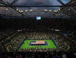 Tennis - US Open 2016
