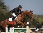 Equitation - Show Jumping 2016