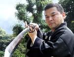 Le katana, histoire d'une légende