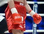 Boxe - Les meilleurs moments de l'année 2016