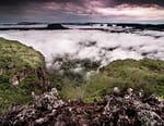 Indonésie sauvage