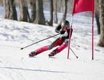 Ski - Slalom géant messieurs