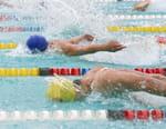 Natation - Championnats du monde en petit bassin 2016