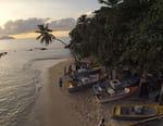 Seychelles, un paradis en héritage