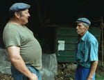 Profils paysans : le quotidien