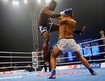 Kick-boxing - Enfusion Live 2017