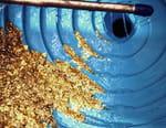 Pêcheurs d'or