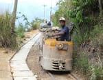 Colombie : la ruée vers l'or