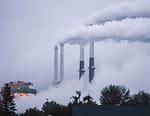 La guerre du charbon