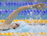Natation - Universiade d'été 2017