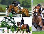 Equitation - Championnats d'Europe de concours complet 2017