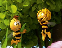 Maya l'abeille 3D : Maya et la butineuse modèle