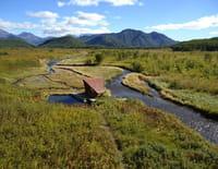 A l'ombre des volcans du Kamtchatka