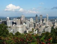 En quête d'identité(s) : Quand la diversité s'invite à Montréal