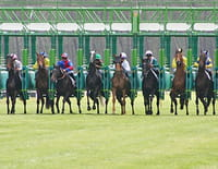 En course sur France 3 : 94e Qatar Prix de l'Arc de Triomphe - Depuis l'hippodrome de Longchamp