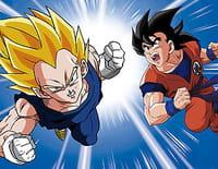 Dragon Ball Z : La porte entre les deux dimensions