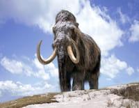Sur la terre des monstres disparus : Des mammouths et des hommes