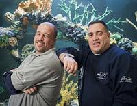 Aquamen : Aquarium à robinet