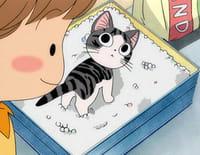 Chi, une vie de chat : Chi garde-malade