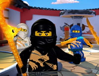 Ninjago : A l'intérieur du Digivers