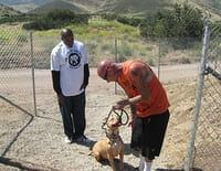 Pitbulls et prisonniers : Tel maître, tel chien