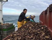 Thalassa : Vivre de la mer, un défi quotidien